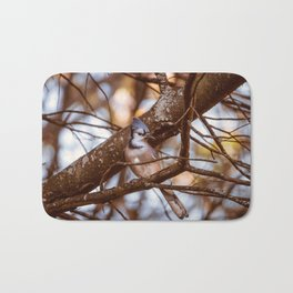 Autumn Bluejay Bath Mat