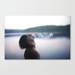 Tranquil Suicide Canvas Print