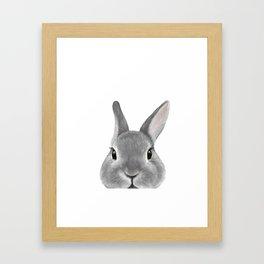 Netherland Dwarf rabbit Grey, illustration original painting print Framed Art Print