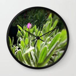 New purple Wall Clock