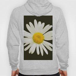 Daisy on a black background - #Society6 #buyart Hoody