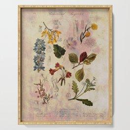 Botanical Study #1, Vintage Botanical Illustration Collage Serving Tray