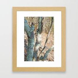 Endless Creation Framed Art Print