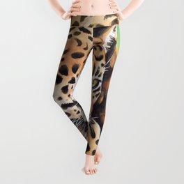 Jaguar Big Cat Prowl Watercolor Ink Art Leggings