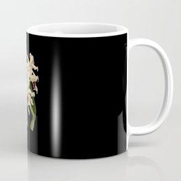 Epidendrum Orchid botanical illustration Coffee Mug
