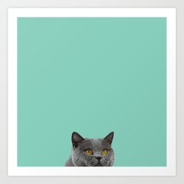 Duck Egg Blue British Short-hair Wall Decor Cat Clock Art Print