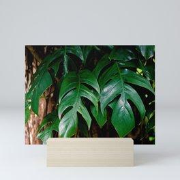 TROPICAL Mini Art Print
