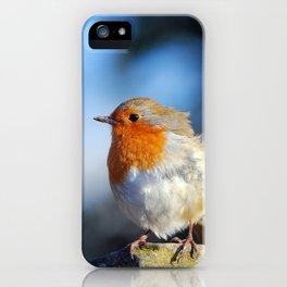 Braced iPhone Case