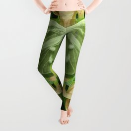Green Glow Butterfly Leggings