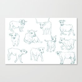 A Variety of Cows Canvas Print