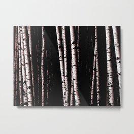 20.2 Metal Print