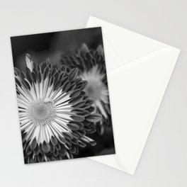 One Behind The Other Stationery Cards