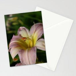 Lovely Lily Stationery Cards