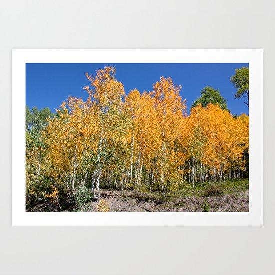Autumn Approaches 1 Art Print