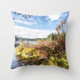 A Jumble of Color Throw Pillow