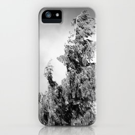 The Tree in the Wind iPhone Case
