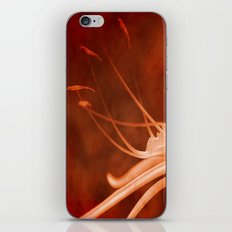 Simply Red iPhone & iPod Skin