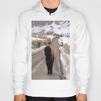 montana Hoodies featuring Montana Traffic Jam by Kim Ramage