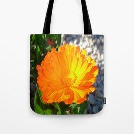 Bright Orange Marigold In Bright Sunlight Tote Bag
