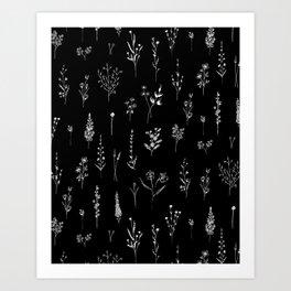 Black wildflowers Art Print