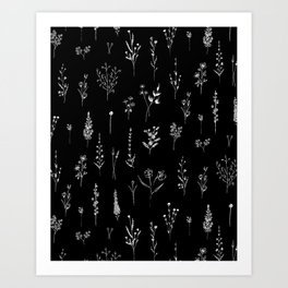 Black wildflowers Art Print