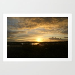 Evening gold Art Print