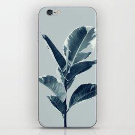 Ficus Elastica Finesse #1 #tropical #foliage #decor #art #society6 iPhone Skin