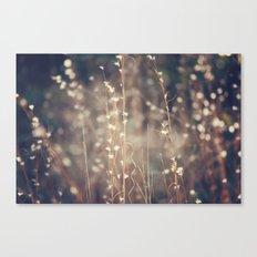 Sparkling Fairy Lights Canvas Print
