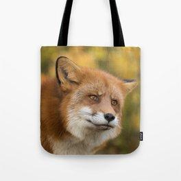 Autumn Fox II Tote Bag