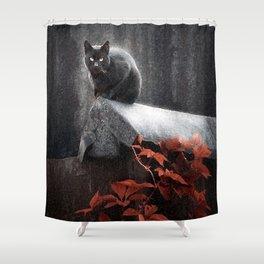 BLACK CAT II Shower Curtain