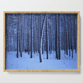 Winter pine forest in blue. Serving Tray