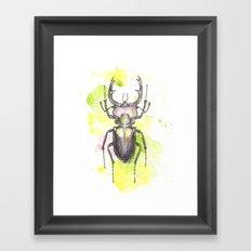 Netbug Framed Art Print