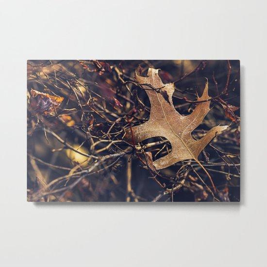 entangled Metal Print