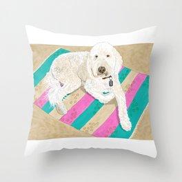 Shaggy Throw Pillow