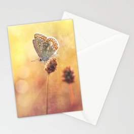 Memories... Stationery Cards