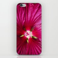hibiscus iPhone & iPod Skins featuring Hibiscus by Christina Rollo