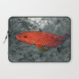 Red Coral Cod Laptop Sleeve
