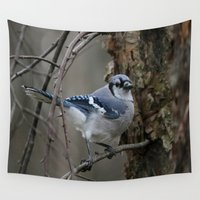 jay fleck Wall Tapestries featuring Blue Jay by Linda Wooderson