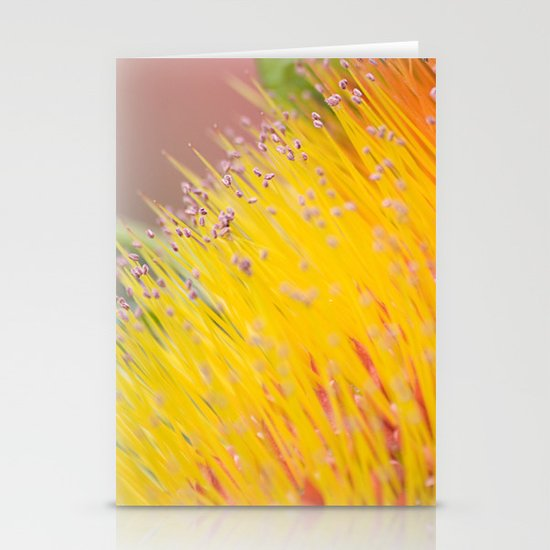 Through a Field of Yellow Stationery Cards
