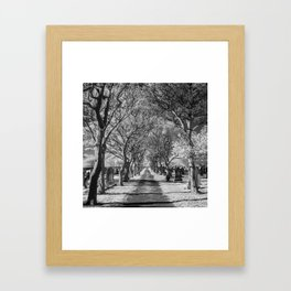 Cemetery path. Framed Art Print