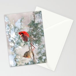 Remembering.... (Northern Cardinals) Stationery Cards