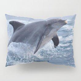 Bottenose dolphin Pillow Sham