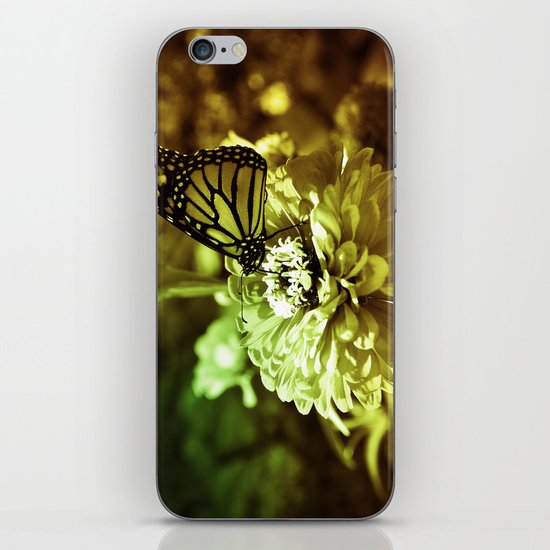 Butterfly on Flower - Color iPhone & iPod Skin