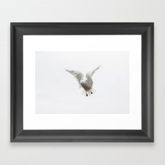 mid-flight Framed Art Print