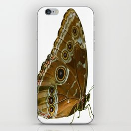 Beautiful Butterfly Wings of Meadow Brown Isolated iPhone Skin