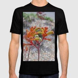 Orange Kangaroo Paw Flowers T-shirt