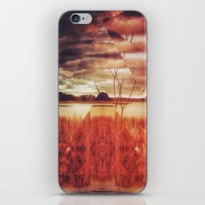 pyrmyd stylk iPhone & iPod Skin