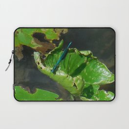 Insect Life Laptop Sleeve