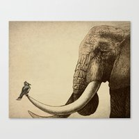 animals Canvas Prints featuring Old Friend by Eric Fan