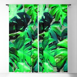 filadendron Blackout Curtain